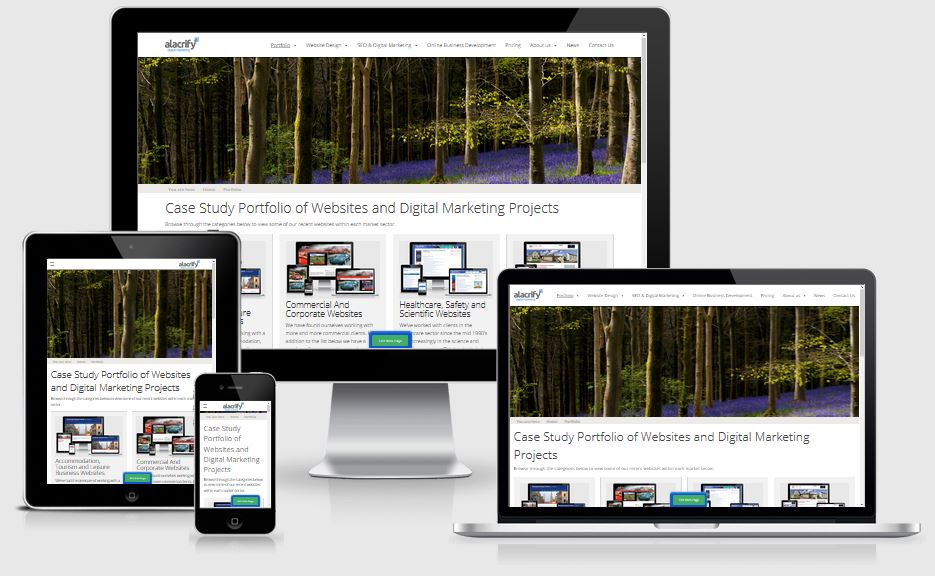 View our website portfolio - showing some of the hundreds of sites we've built.