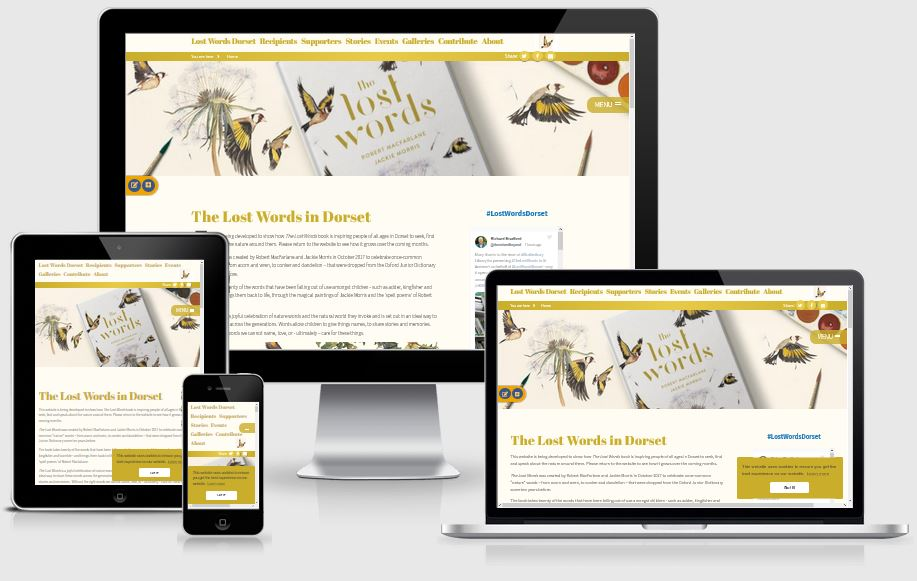 NEW Website for The Lost Words Dorset